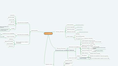 Mind Map: La municipalidad