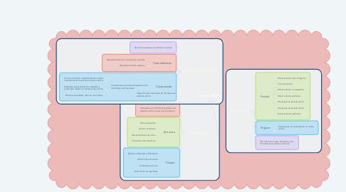 Mind Map: CITOESQUELETO