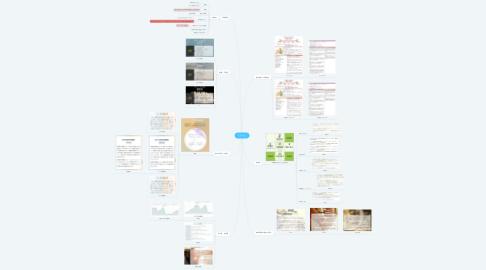 Mind Map: てびさん