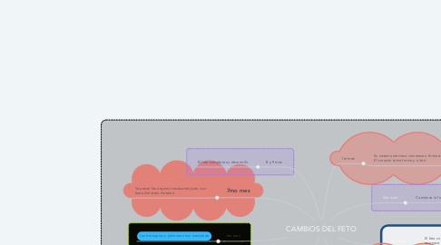 Mind Map: CAMBIOS DEL FETO