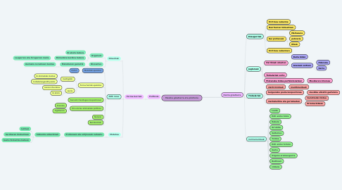 Mind Map: Musika gizatiarra eta pilofonia