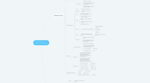 Mind Map: PEDAGOGÍA SOCIAL Y PEDAGOGÍA DEL TEXTO