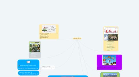 Mind Map: Impactos de la flora y Fauna