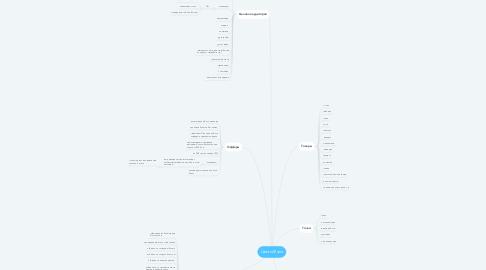 Mind Map: Цветы Майя