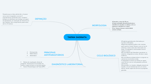 Mind Map: TAENIA SAGINATA