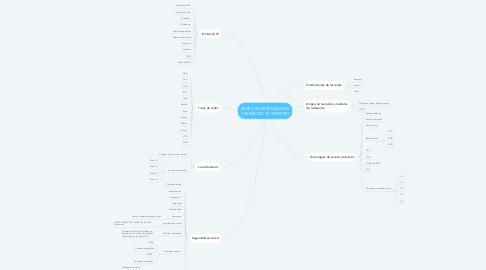 Mind Map: REDES DE ORDENADORES Y SERVICIOS DE INTERNET