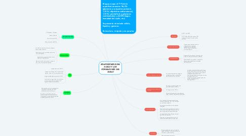Mind Map: EDAFOGÉNESIS DEL SUELO Y LOS FORMADORES DEL SUELO