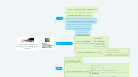 Mind Map: GESTIÓN DE ALCANCE DEL PROYECTO: Documento que describe el modo y el momento en que se   entregarán los beneficios del proyecto, y describe los mecanismos que deben estar a disposición para medir esos   beneficios