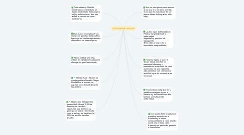 Mind Map: LEYES DE MENDEL Y CONCEPTOS