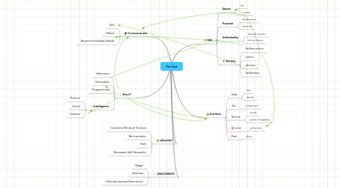 Mind Map: The Soul