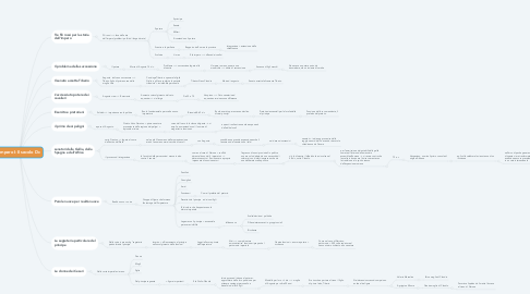 Mind Map: Impero I-II secolo Dc