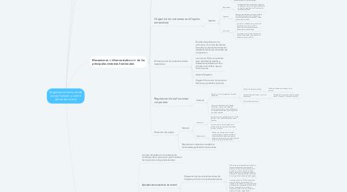 Mind Map: Organizacion funcional del cuerpo humano y control del medio interno