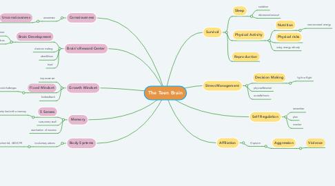 Mind Map: The Teen Brain