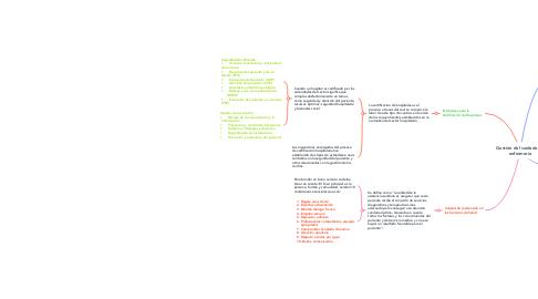 Mind Map: Gestión del cuidado de enfermería