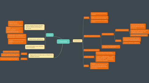 Mind Map: Conjunctiva