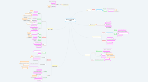 Mind Map: Pronunciación del español