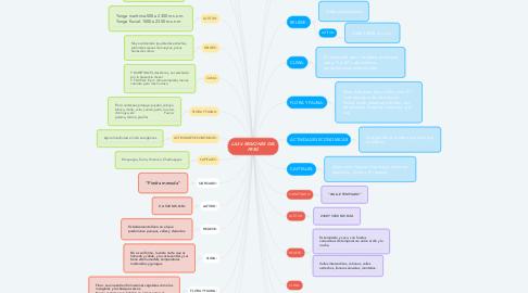 Mind Map: LAS 4 REGIONES DEL PERÚ