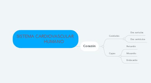 Mind Map: SISTEMA CARDIOVASCULAR                HUMANO
