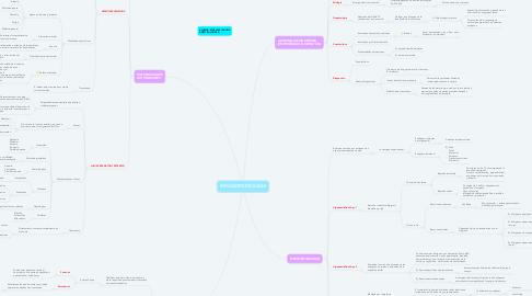Mind Map: INMUNOPATOLOGIAS