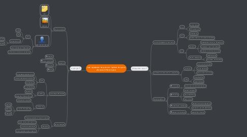 Mind Map: как правильно делать презентацию Алексей Каптерев