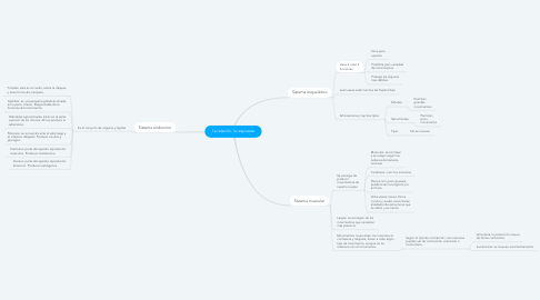 Mind Map: La relación: la respuesta