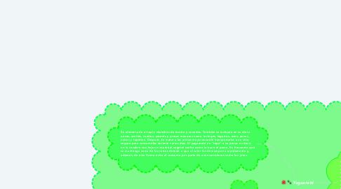 Mind Map: Yaguareté