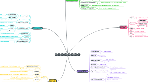 Mind Map: LENGUAJE DEL TRANSPORTE INTERMODAL
