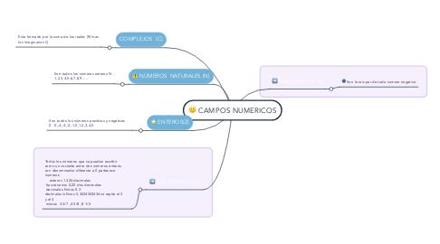 Mind Map: CAMPOS NUMERICOS