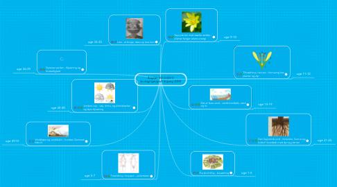 Mind Map: Årsplan 2012/2013 biologi/geografi årgang 2005