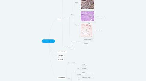 Mind Map: TEJIDO CONECTIVO