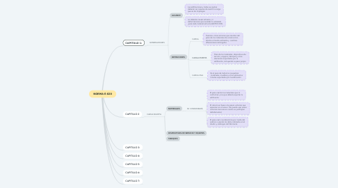 Mind Map: NORMA E-020