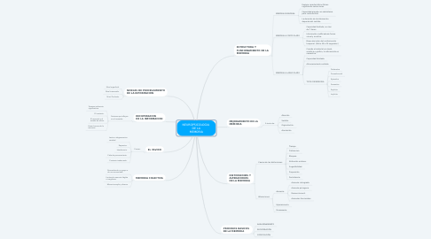 Mind Map: NEUROPSICOLOGIA  DE LA MEMORIA