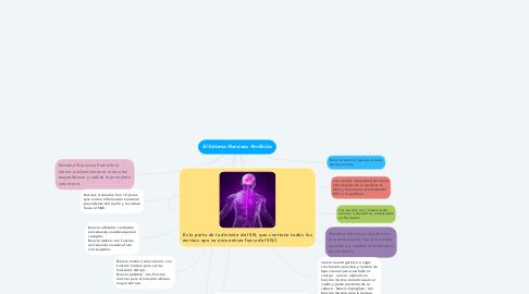 Mind Map: El Sistema Nervioso Periférico