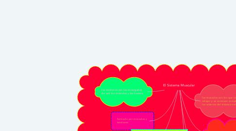 Mind Map: El Sistema Muscular