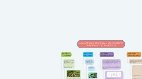Mind Map: ELEMENTOS QUE CONFORMAN LOS ECOSITEMAS DENNIS PASAFLORES CASTAÑEDA