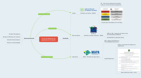 Mind Map: Fluxo de Registro de Agrotóxicos no Brasil
