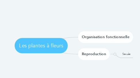 Mind Map: Les plantes à fleurs