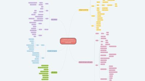 Mind Map: Condiciones internas y externas para la gestión del aprendizaje