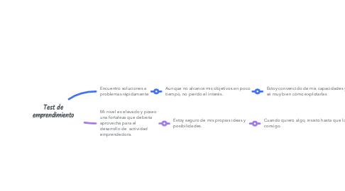 Mind Map: Test de emprendimiento