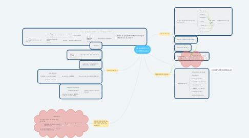 Mind Map: DESARROLLO CURRICULAR