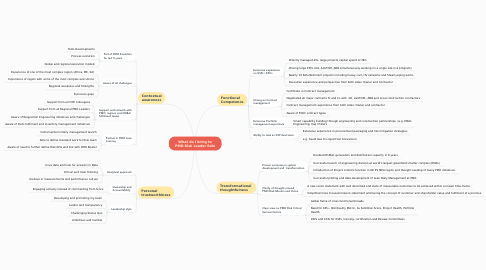 Mind Map: What do I bring to PMO Risk Leader Role