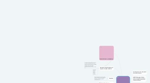 Mind Map: TEMAS DE EXAMEN