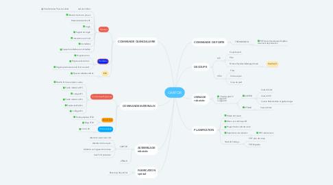 Mind Map: CARFOR