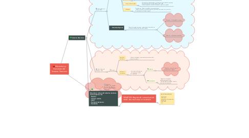 Mind Map: Estructura y Funciones del  Sistema Nervioso