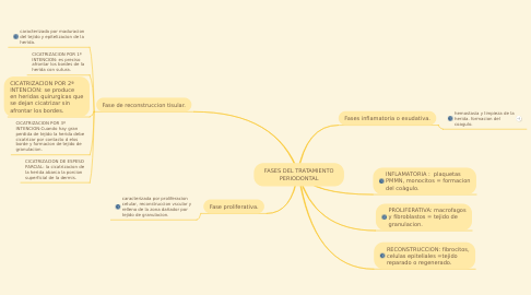 Mind Map: FASES DEL TRATAMIENTO PERIODONTAL
