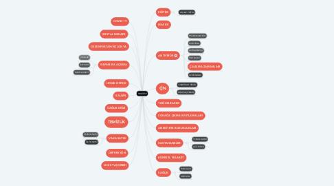 Mind Map: PANDEMİ