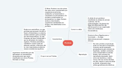 Mind Map: Protista