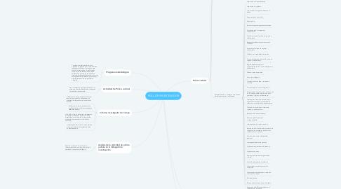 Mind Map: ROLL DE INVESTIGADOR