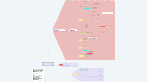 Mind Map: Los fundamentos de la administración.