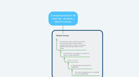 Mind Map: Conceptualización de matrices, vectores y determinantes.